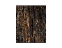 Ağaç Desen 2.7mm Mdf 70x56 cm (1 Parça) - Thumbnail